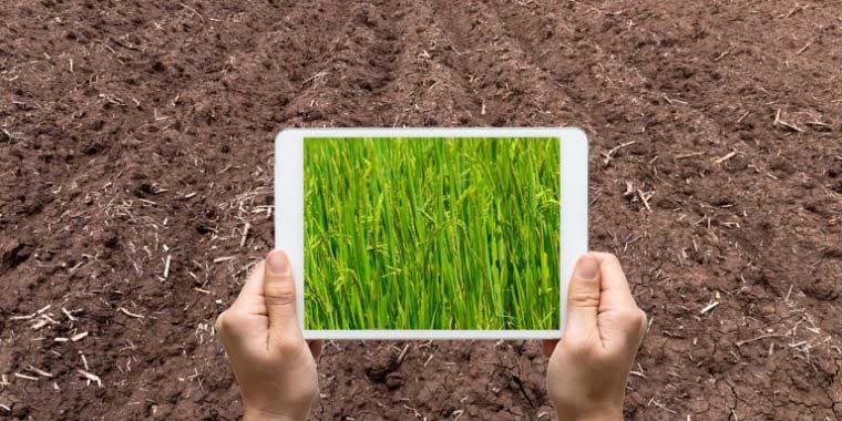 اهمیت عکاسی از محصول در تجارت الکترونیک